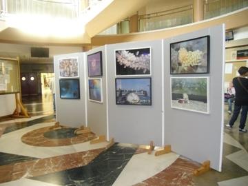 Exposición ACUIFOTO